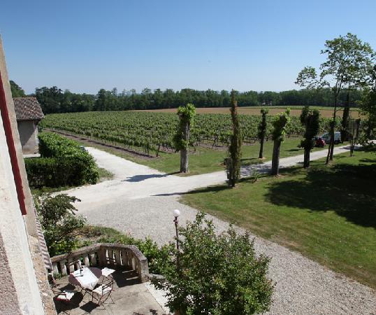 Chateau Lavergne-Dulong - Chambres d'hotes: la vue sur le parc
