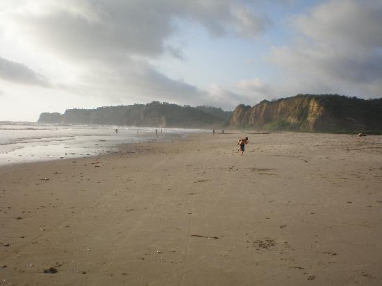 Canoa, เอกวาดอร์: la playa