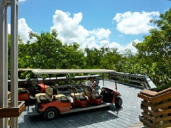 Clam Pass Park: Transportmittel zum Beach