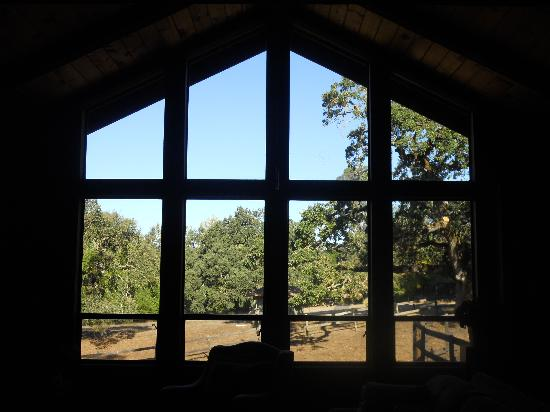 Kenwood Oaks Guest House : View looking out the living room / great room