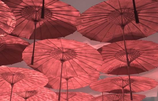 Thai Cafe & Restaurant: Umbrella room