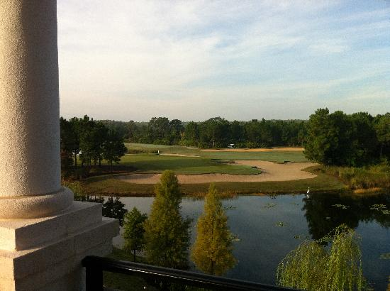 Marriott's Lakeshore Reserve: Nice view of pond & golf course from Balcony