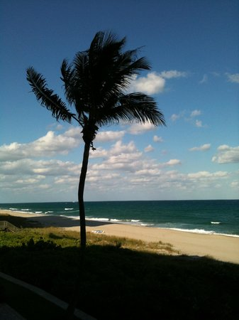 Highland Beach, FL: The view in the afternoon
