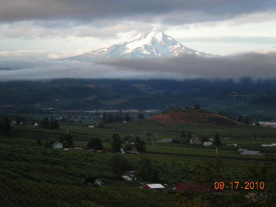 Panorama Lodge: View of Mt Hood from the Deck