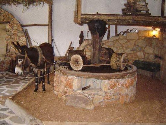 Критская ферма по производству оливкового масла