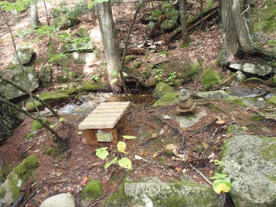 Nurture Through Nature Eco-cabin Rentals and Retreats: Meditation bench near brook