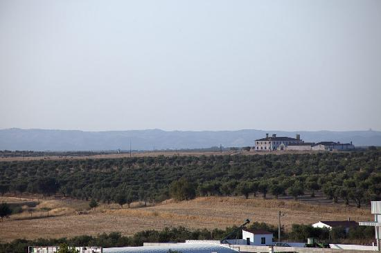 Betica Hotel Rural : Surrounding