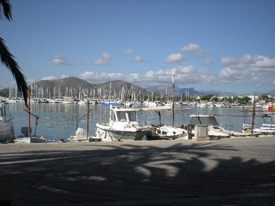 Platja d'Or: Alcudia port
