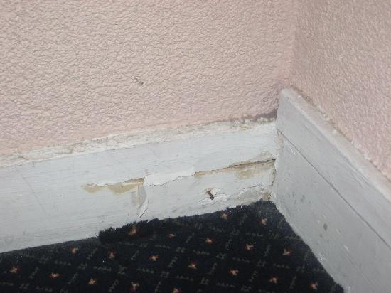Hotel Montmartrois: see the plaster peeling off? disgusting!