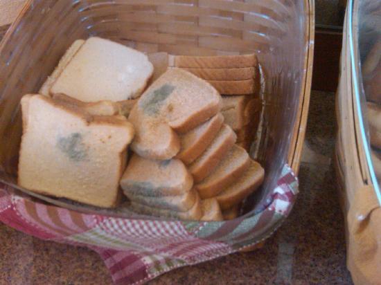 Hotel Indigo San Diego Del Mar: mold on bread at breakfast station