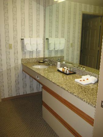 Sheraton Suites Houston Near The Galleria: Sink area view 2