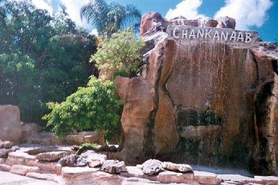Chankanaab national park discount coupons