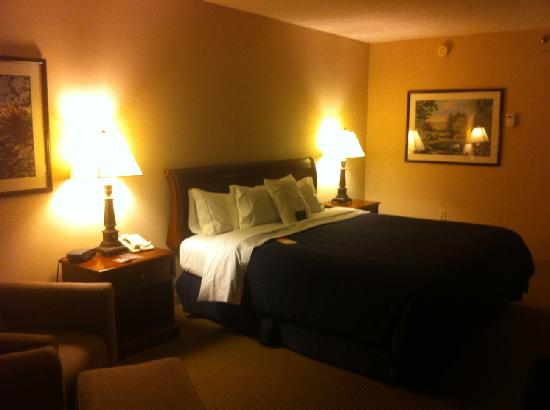 Sheraton Imperial Hotel and Convention Center: King size bed