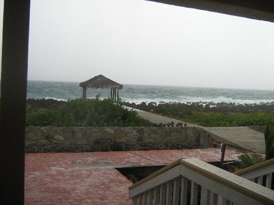 Seagrape Plantation Resort: Foto desde la habitacion