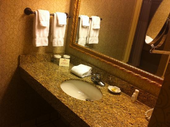 Holiday Inn Clark - Newark: Bathroom