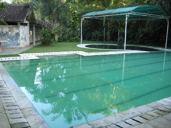 Jiwa Damai Organic Garden & Retreat: Pool