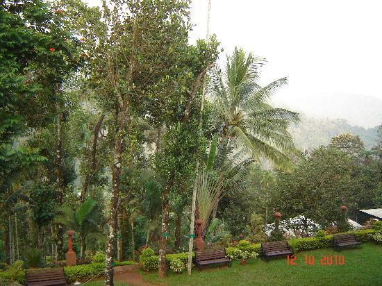 Igloo Nature Resort: Room View