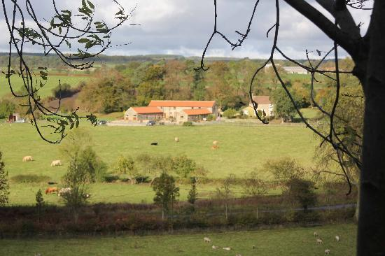 Rawcliffe House Farm Holiday Cottages and Studio Rooms: A beautiful place to rest