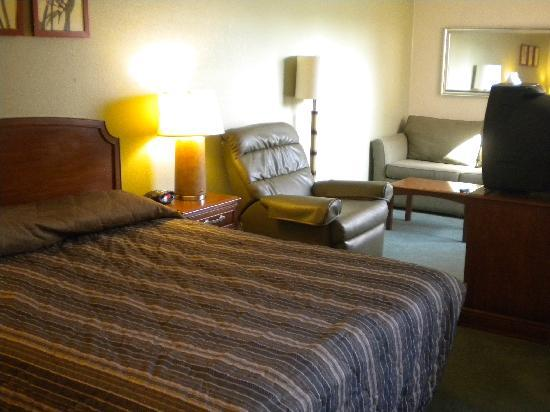 Extended Stay America - Detroit - Novi - Orchard Hill Place: king bed and living area