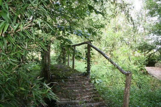La Cropte, Francia: pont de bois dans le jardin