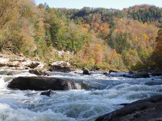 ACE Adventure Resort: Sweet's Falls on the Gauley (lunchspot)