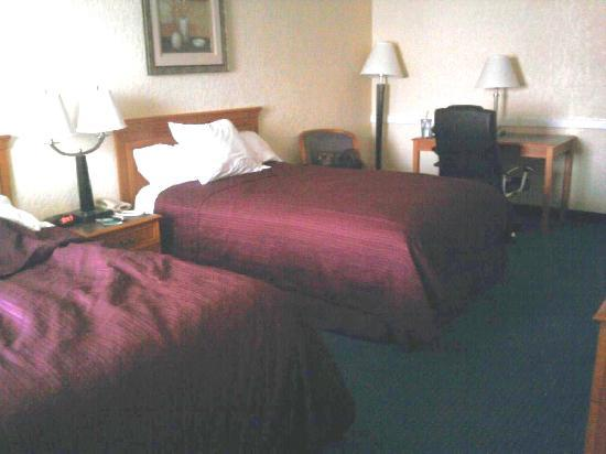 Regency Inn: 2 Double Bed room