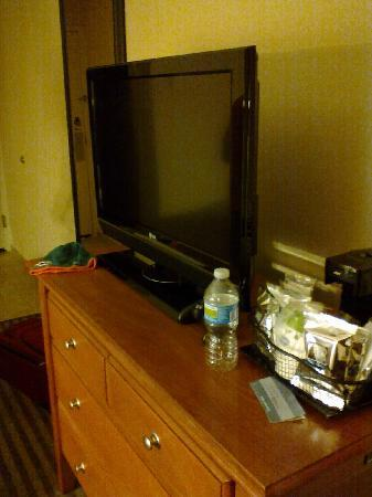 Hampton Inn Chicago-O'Hare International Airport: Plasma TV