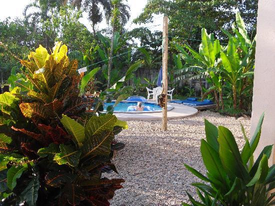 Yurapamba Jungle Resort: Refreshing pool