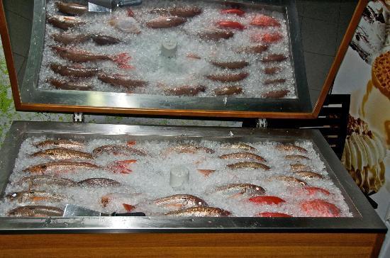Delicias do Mar: Kühltheke mit Frischfisch