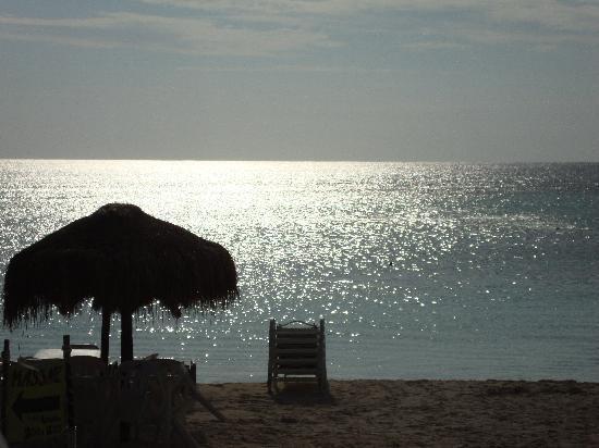 Bahia Divers: The beach
