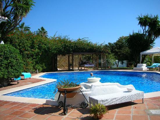Casa la Concha: pool area