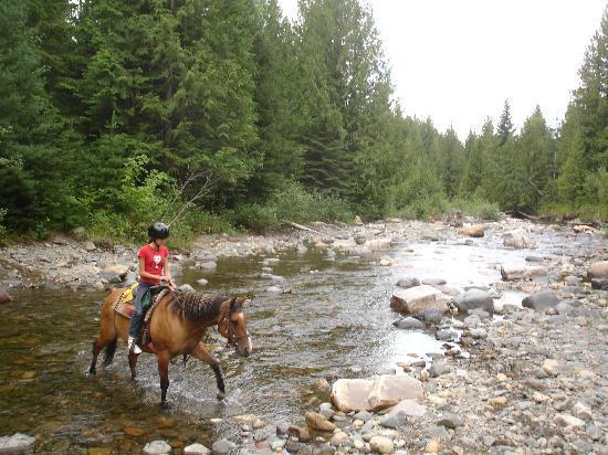 Western Pleasure Guest Ranch: Crossing Streams at Western Pleasure