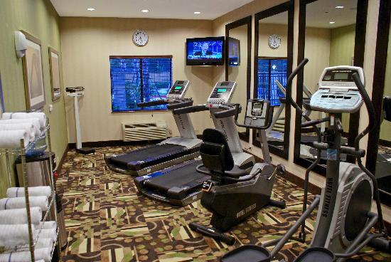 Holiday Inn Express Hotel & Suites Houston NW-Beltway 8-West Road: Fully Equipped Fitness Center