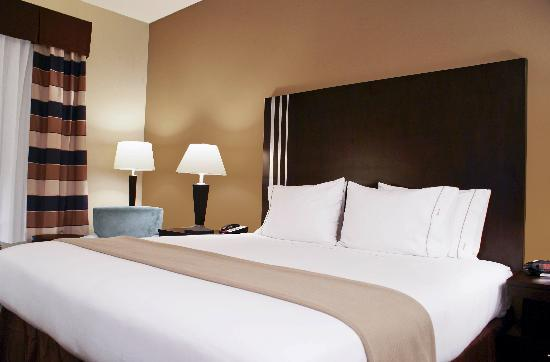 Holiday Inn Express Hotel & Suites Houston NW-Beltway 8-West Road: King Bedroom
