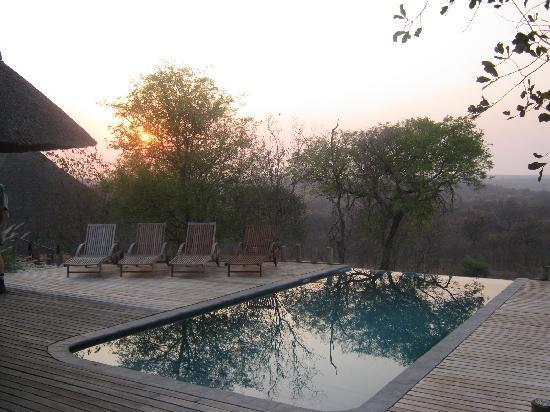 Casart Game Lodge : Swimming-pool at sunrise
