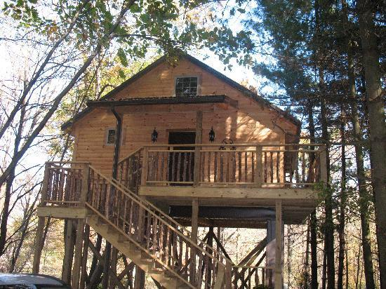 Amish Country Lodging: Tree House Cabin