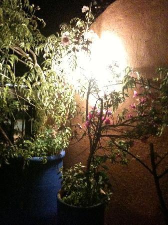 Riad Amskal: Le soir sur la terrrasse