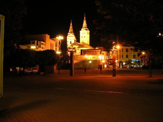 Жилина, Словакия: コメントを入力してください (必須)