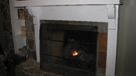 The Lodge at Gorham's Bluff: fireplace in our room