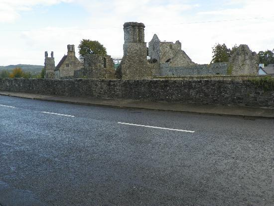 View of Boyle Abbey from Cesh Corran's front door