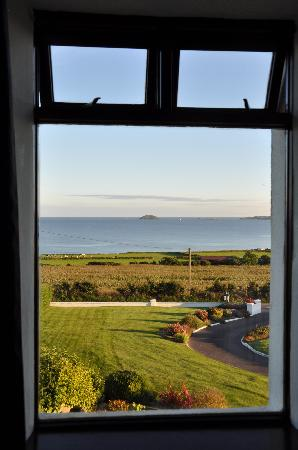 Castle Farm Bed & Breakfast: The view from our window