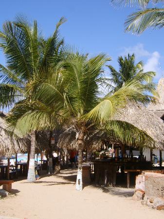 Casa Caracol : Bar de la plage