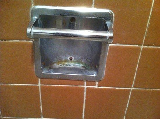 Safari Motel : soap dish . . . could use some soap!
