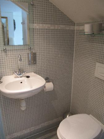 Aemstelhuys Bed & Breakfast: bagno