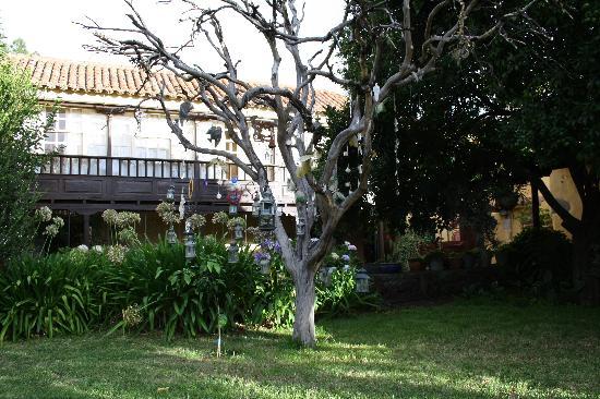 Vega de San Mateo, Espagne : l'arbre aux lanternes