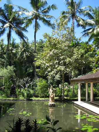Jiwa Damai Organic Garden & Retreat: Welcome to Jiwa Damai Bali