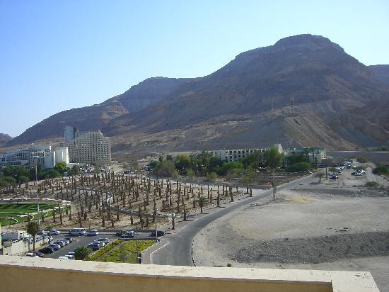 Hod Hamidbar Resort and Spa Hotel: Blick auf Ein Bokek