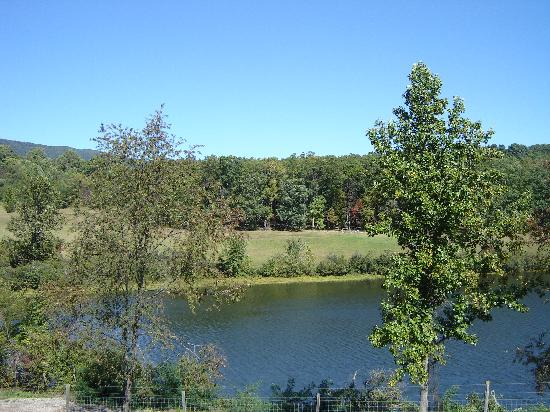 View of Baldwin Pond from Afton Mountain Vineyards Terrace