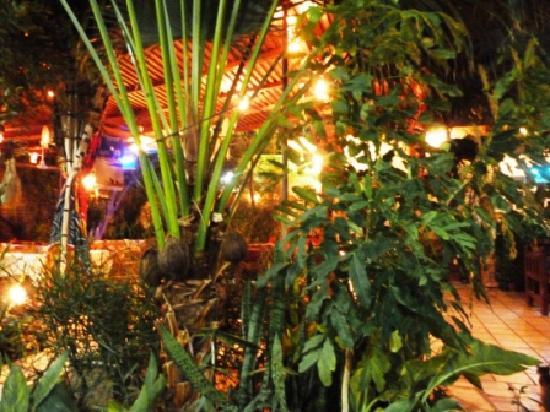 Amon Hotel Luxor: Jardin, le soir