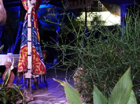 Amon Hotel Luxor: Jardin, la nuit